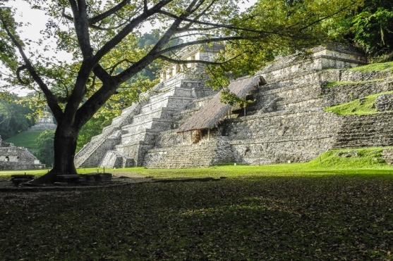 Morning Light at Palenque