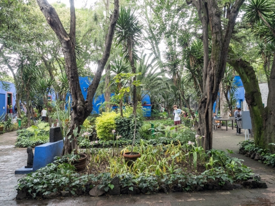 The garden at Casa Azul