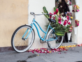 Antigua Flower Delivery