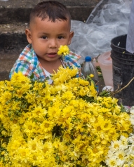 Boy at Flower Stall
