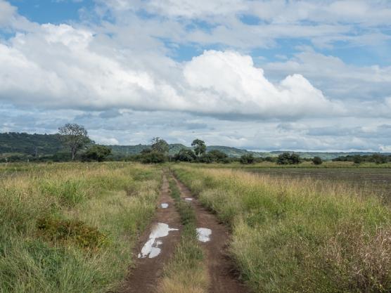 Guanacaste Province birding habitat