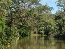 Rio Frio, Caño Negro Wildlife Refuge