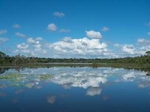 Lagoon, Caño Negro Wildlife Refuge
