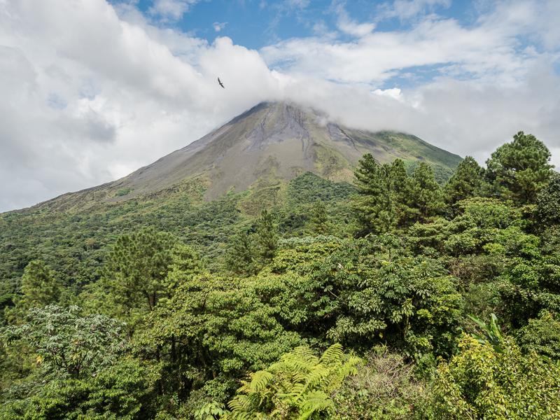 Cerro Lodge, Costa Rica – December15