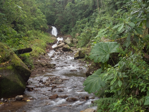 Unamed Waterfall