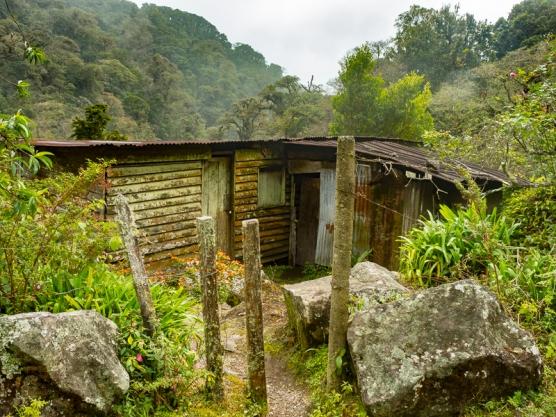 Cloud Forest Farmhouse